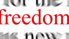 freedomsmall